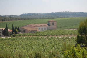The property sits among the grapevines of a working vineyard.